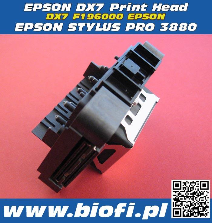 Głowica Drukująca EPSON DX7 F177000 PRINT HEAD EPSON DX7 PrintHead for EPSON Stylus Pro 3880