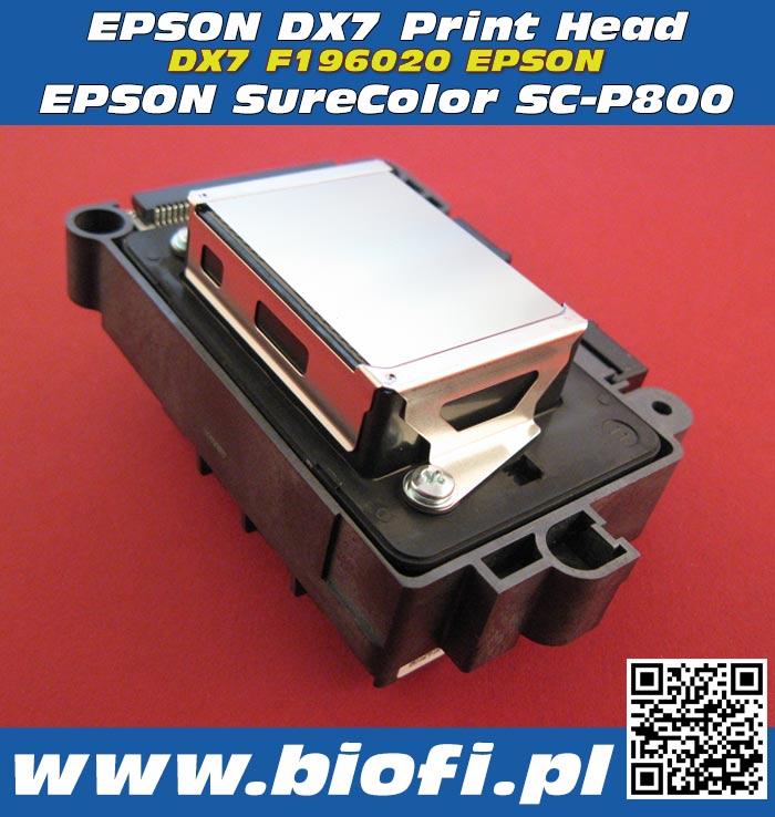 Głowica Drukująca EPSON DX7 F177000 PRINT HEAD EPSON DX7 PrintHead for EPSON SureColor SC-P800