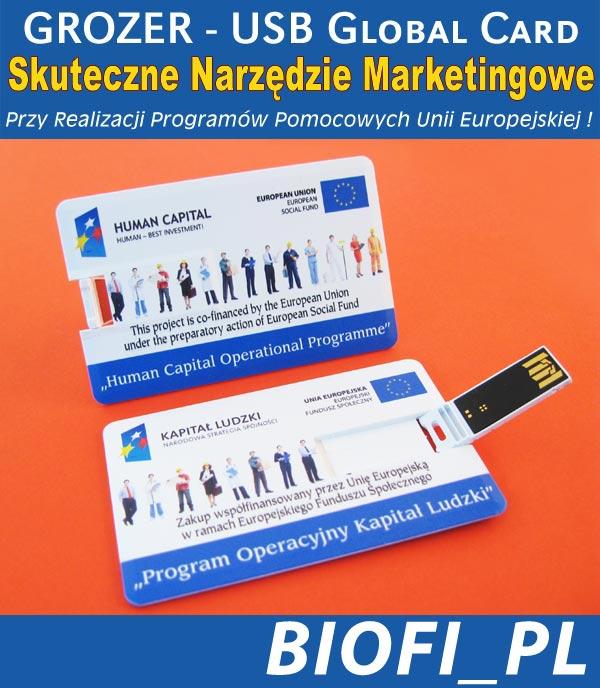 Karta USB Pendrive GROZER - Realizacja Promgramów Pomocowych UE