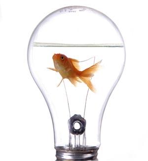 Innowacyjność i Nowoczesność