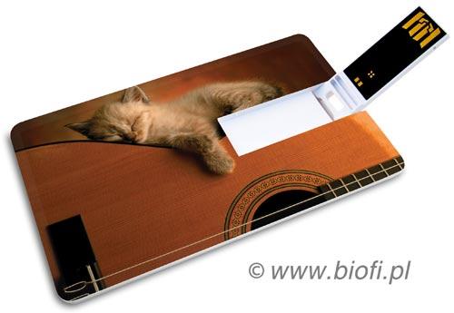 Wspaniała Karta Pendrive GROZER USB 2.0